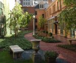 Tree Studios Courtyard